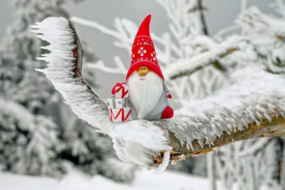 Image of Santa Clause as a gnome on a tree branch